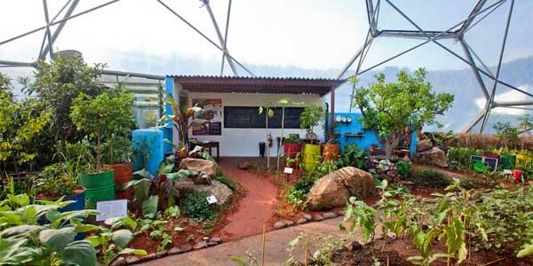 The CAMFED Garden at Eden